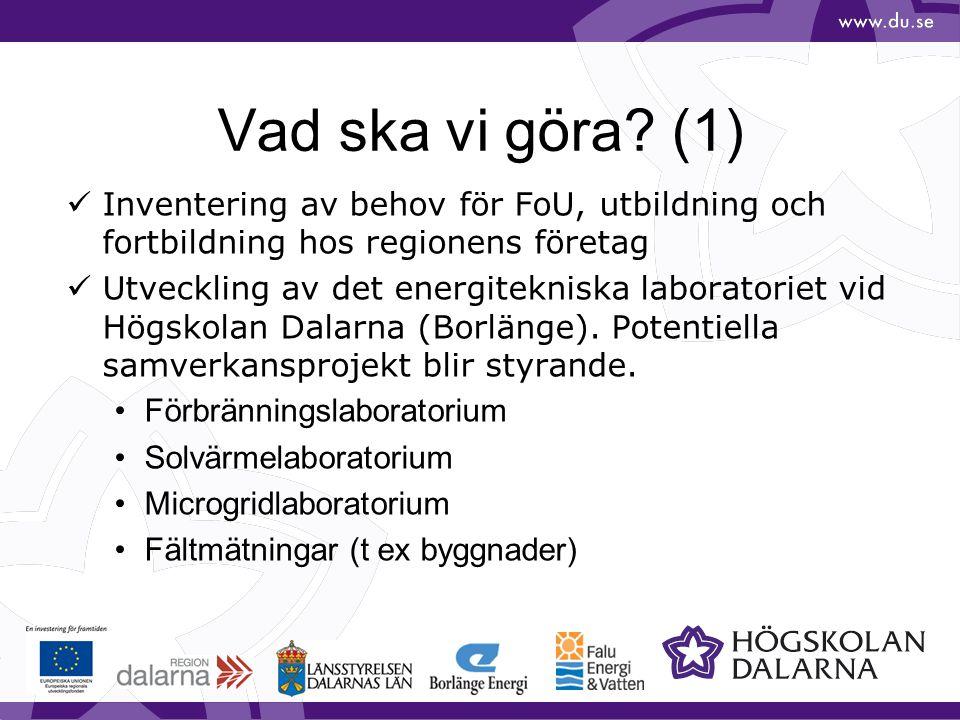 Vad ska vi göra? (1) Inventering av behov för FoU, utbildning och fortbildning hos regionens företag Utveckling av det energitekniska laboratoriet vid