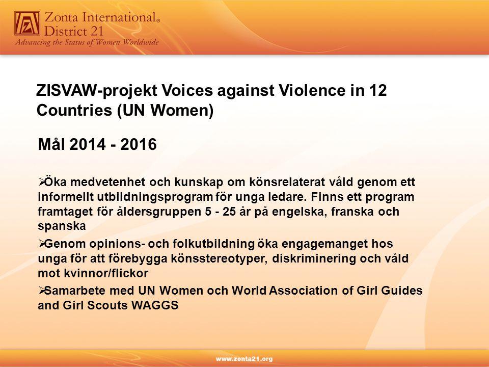 ZISVAW-projekt Voices against Violence in 12 Countries (UN Women) Mål 2014 - 2016  Öka medvetenhet och kunskap om könsrelaterat våld genom ett informellt utbildningsprogram för unga ledare.