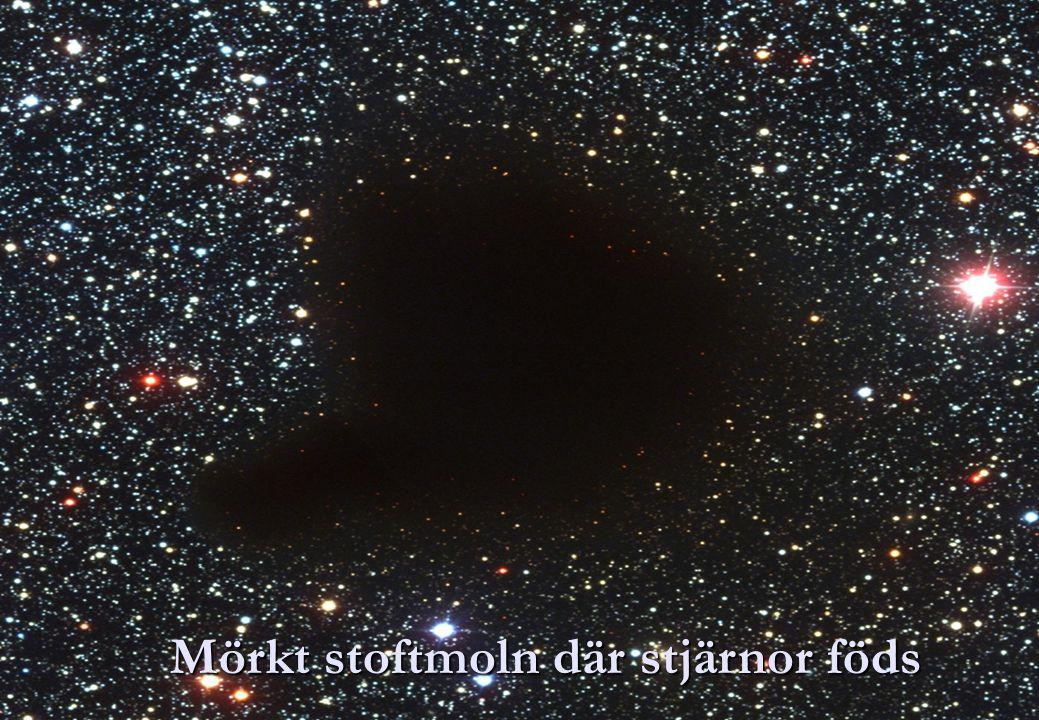 Mörkt stoftmoln där stjärnor föds