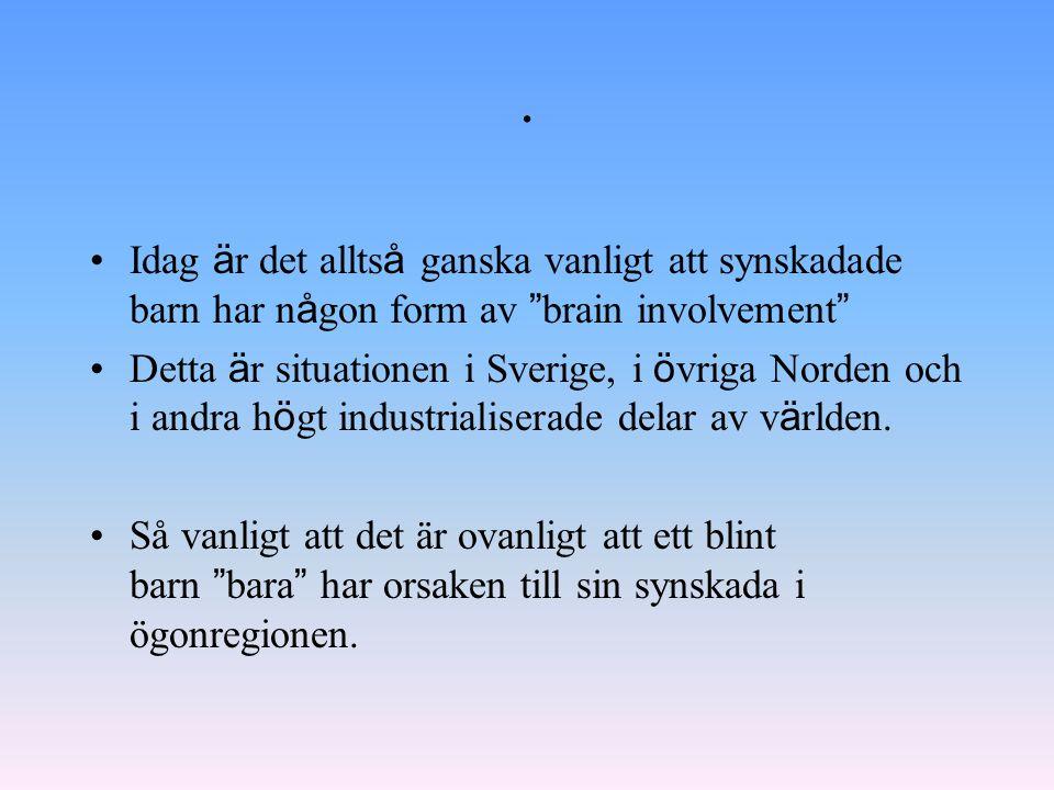 """. Idag ä r det allts å ganska vanligt att synskadade barn har n å gon form av """" brain involvement """" Detta ä r situationen i Sverige, i ö vriga Norden"""