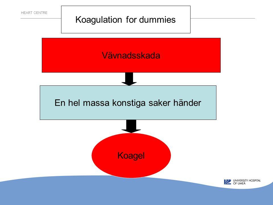 Vävnadsskada En hel massa konstiga saker händer Koagel Koagulation for dummies