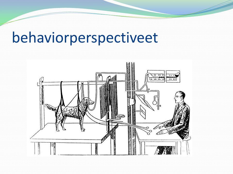 behaviorperspectiveet