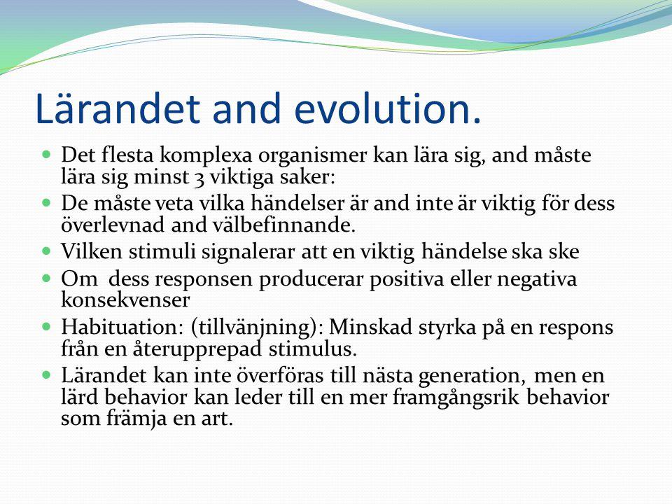 Lärandet and evolution. Det flesta komplexa organismer kan lära sig, and måste lära sig minst 3 viktiga saker: De måste veta vilka händelser är and in