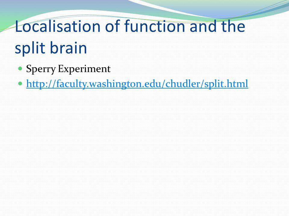 Localisation of function and the split brain Sperry Experiment http://faculty.washington.edu/chudler/split.html
