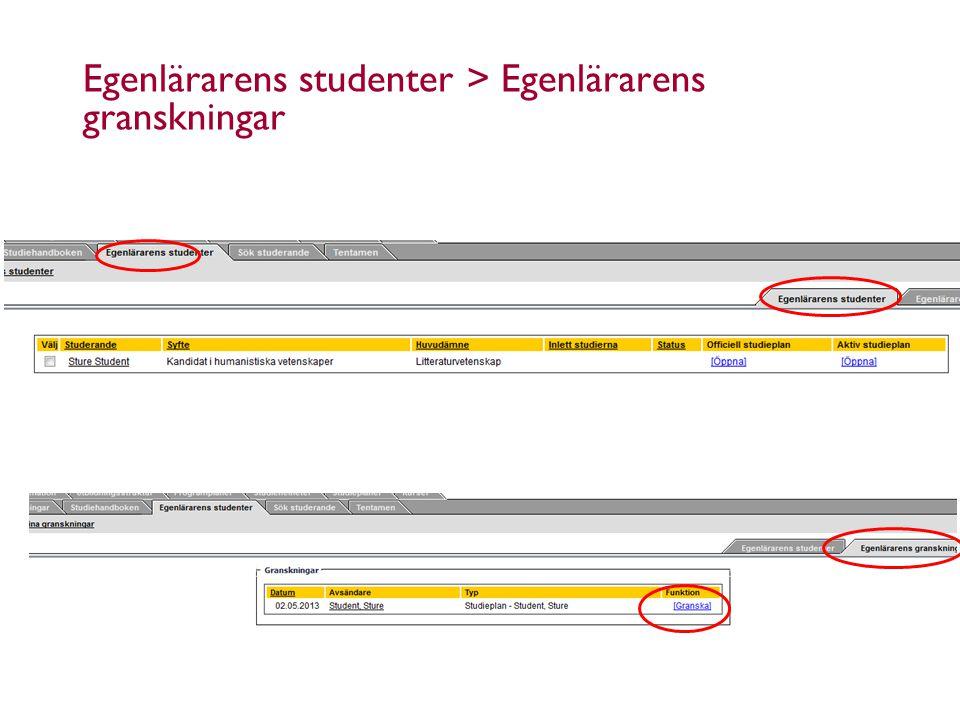 9.5.2014Åbo Akademi - Domkyrkotorget 3 - 20500 Åbo 11 Egenlärarens studenter > Egenlärarens granskningar