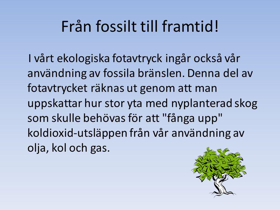 Från fossilt till framtid.