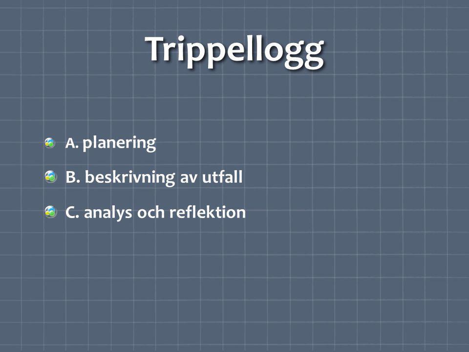 Trippellogg A. planering B. beskrivning av utfall C. analys och reflektion