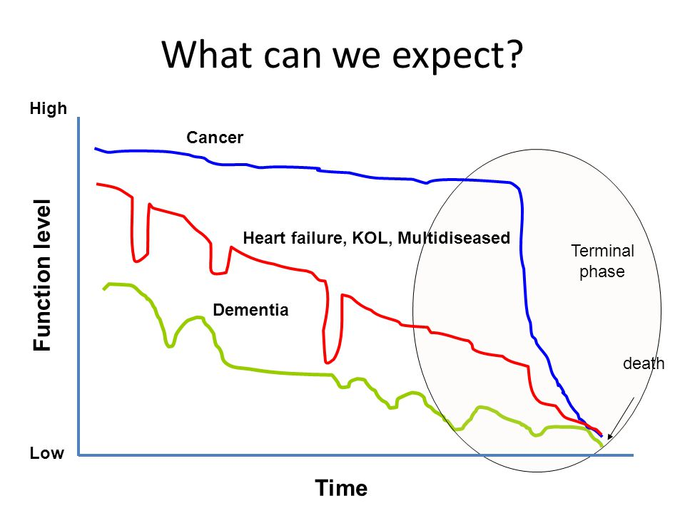 Time Function level Low death Dementia Cancer Heart failure, KOL, Multidiseased What can we expect? Terminal phase High
