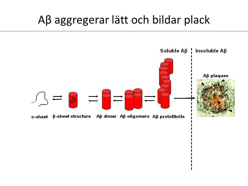 Aβ aggregerar lätt och bildar plack AβAβ