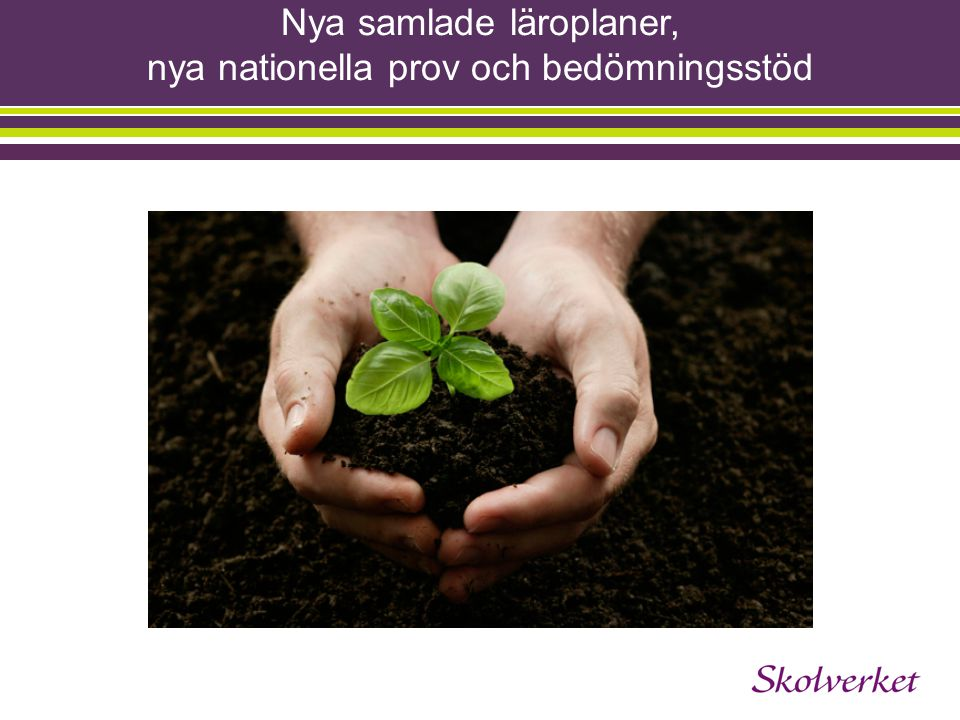 Styrdokument Regering Skolverket Regering Riksdag Skolförordningen Skollagen