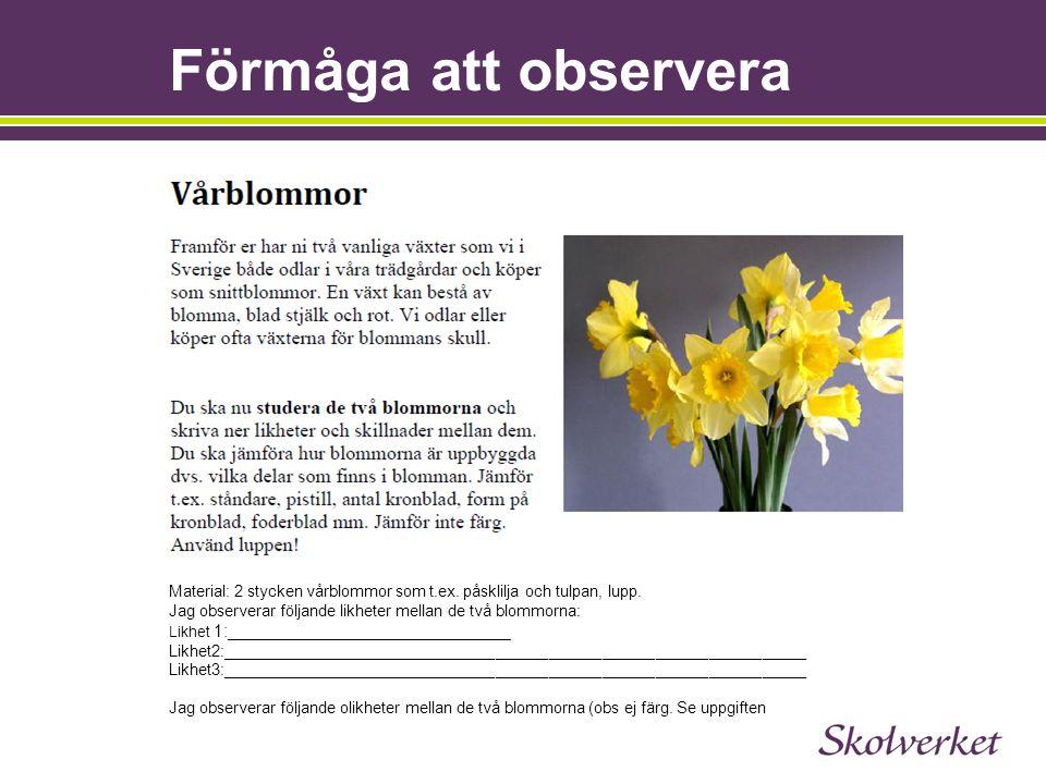 27 Material: 2 stycken vårblommor som t.ex. påsklilja och tulpan, lupp. Jag observerar följande likheter mellan de två blommorna: Likhet 1:___________