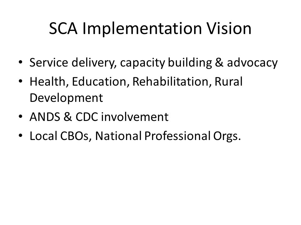 SCA Implementation Vision Service delivery, capacity building & advocacy Health, Education, Rehabilitation, Rural Development ANDS & CDC involvement Local CBOs, National Professional Orgs.