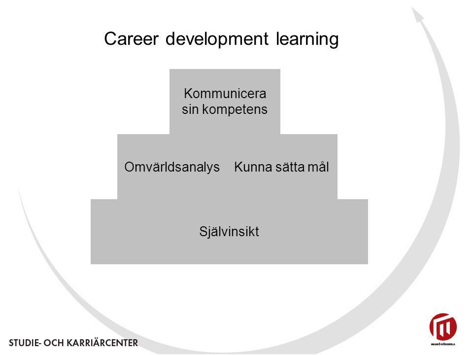 Självinsikt OmvärldsanalysKunna sätta mål Kommunicera sin kompetens Career development learning