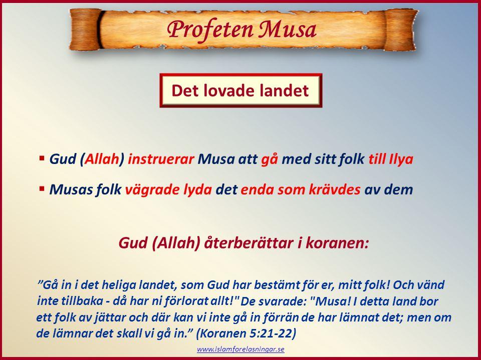 www.islamforelasningar.se Profeten Musa Det lovade landet  Gud (Allah) instruerar Musa att gå med sitt folk till Ilya  Musas folk vägrade lyda det enda som krävdes av dem Gå in i det heliga landet, som Gud har bestämt för er, mitt folk.