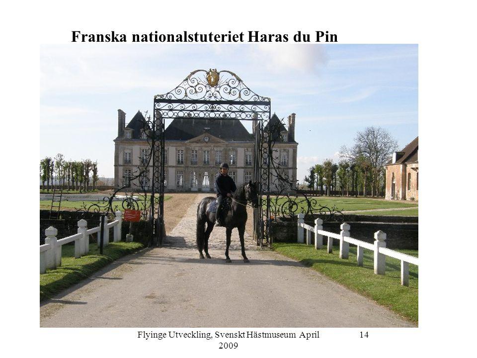 Flyinge Utveckling, Svenskt Hästmuseum April 2009 14 Franska nationalstuteriet Haras du Pin