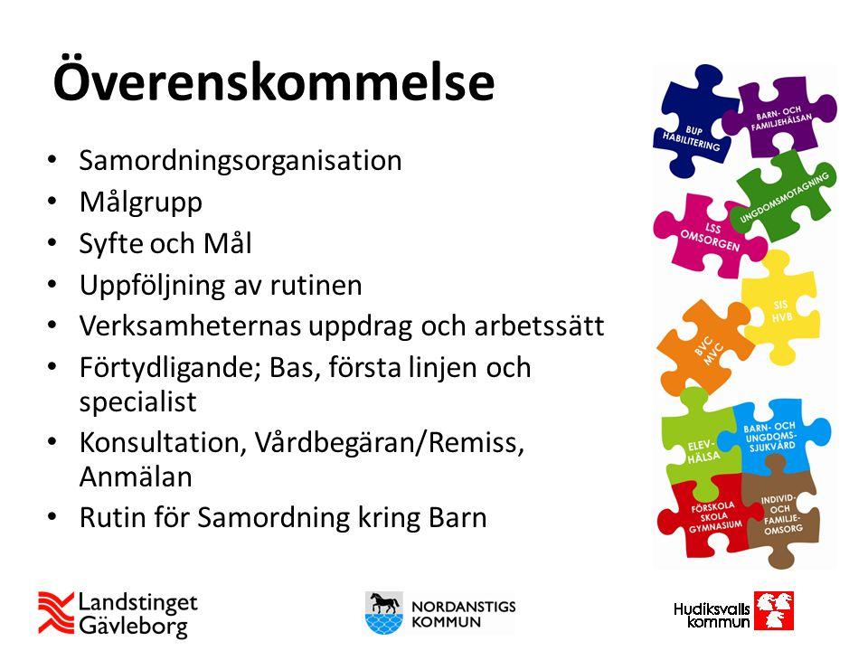 www.regiongavleborg.se/psynk Kommunikationsplan Strukturerad uppföljning i chefssamverkan och ledningsgrupp Gemensamt arbetssätt vid SIP möte Workshops kring verksamheternas uppdrag Gemensam uppstartsdag i Nordanstig FOU – Forskare möter kliniker Nätverk Välfärd