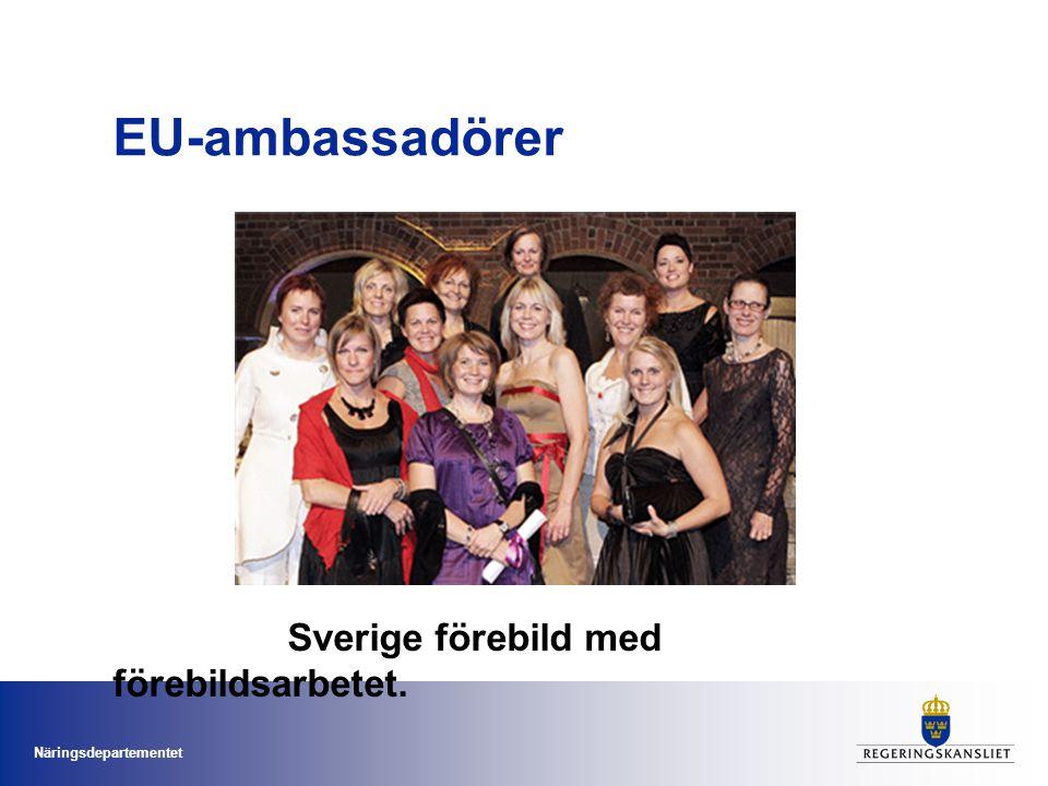 Näringsdepartementet EU-ambassadörer Sverige förebild med förebildsarbetet.