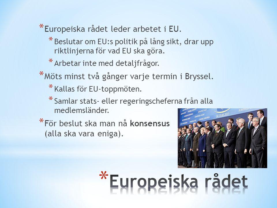* Europeiska rådet leder arbetet i EU. * Beslutar om EU:s politik på lång sikt, drar upp riktlinjerna för vad EU ska göra. * Arbetar inte med detaljfr