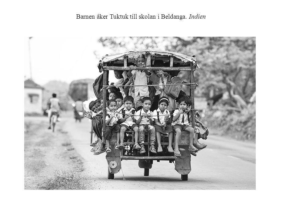 Barnen åker Tuktuk till skolan i Beldanga. Indien
