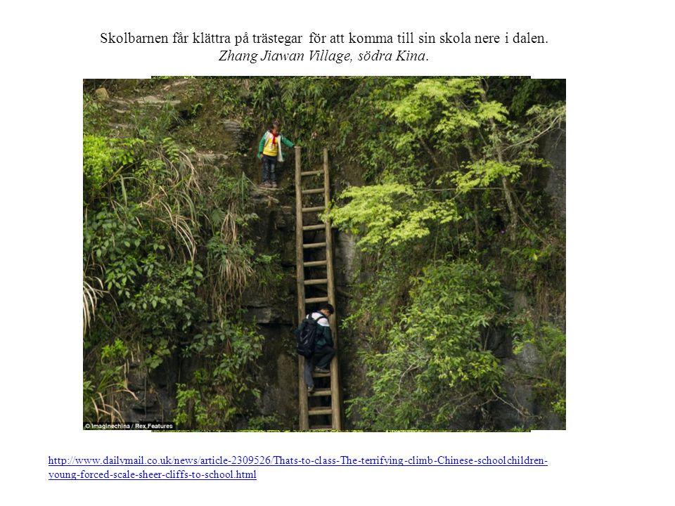 Skolbarnen får klättra på trästegar för att komma till sin skola nere i dalen.
