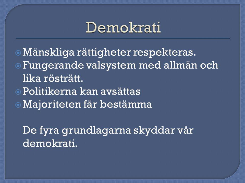  Mänskliga rättigheter respekteras. Fungerande valsystem med allmän och lika rösträtt.
