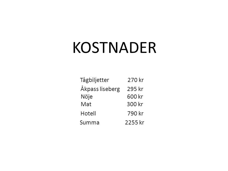 KOSTNADER Tågbiljetter 270 kr Åkpass liseberg 295 kr Nöje 600 kr Mat 300 kr Hotell 790 kr Summa 2255 kr