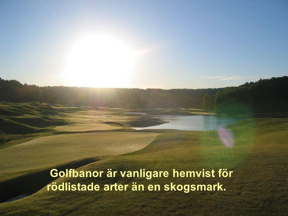 Golfare kräver inte att stat eller kommun betalar för anläggandet av banor där de spelar.