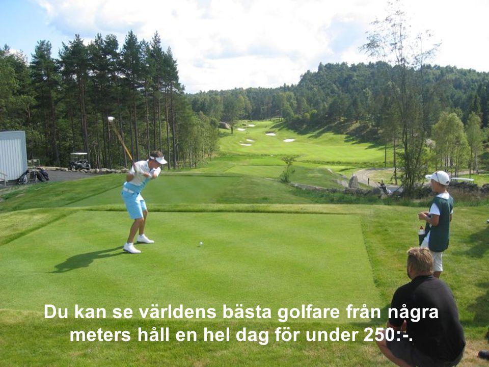Golfbanor är vanligare hemvist för rödlistade arter än en skogsmark.
