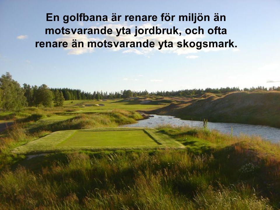 Du kan se världens bästa golfare från några meters håll en hel dag för under 250:-.
