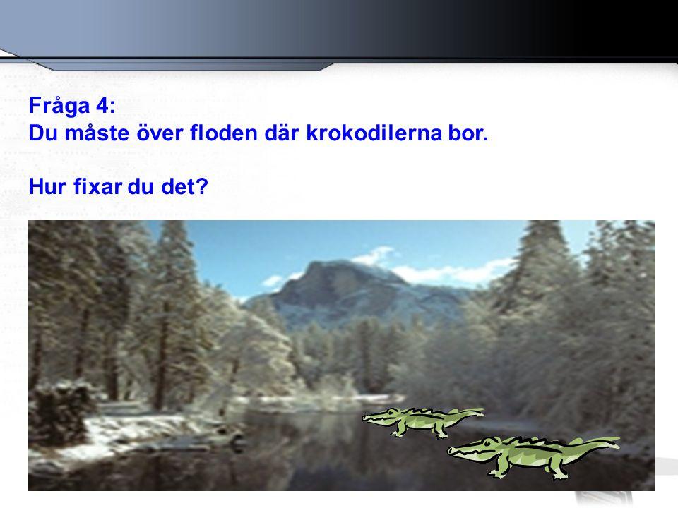 Fråga 4: Du måste över floden där krokodilerna bor. Hur fixar du det?