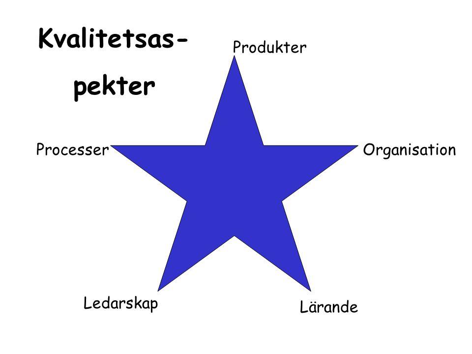 Processer Ledarskap Lärande Organisation Produkter Kvalitetsas- pekter