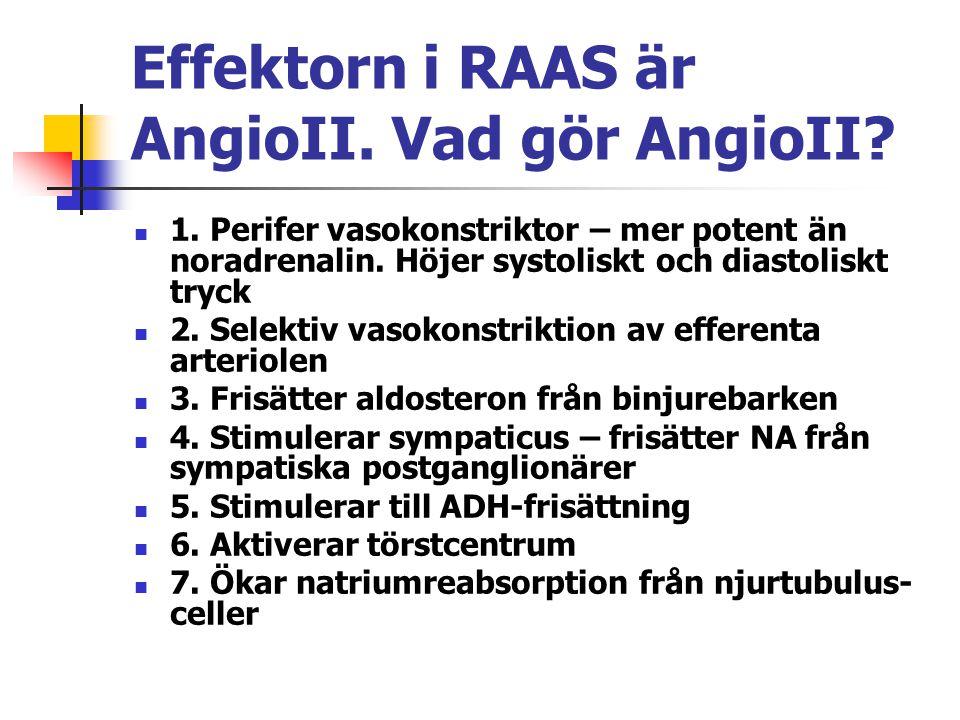 Effektorn i RAAS är AngioII. Vad gör AngioII? 1. Perifer vasokonstriktor – mer potent än noradrenalin. Höjer systoliskt och diastoliskt tryck 2. Selek