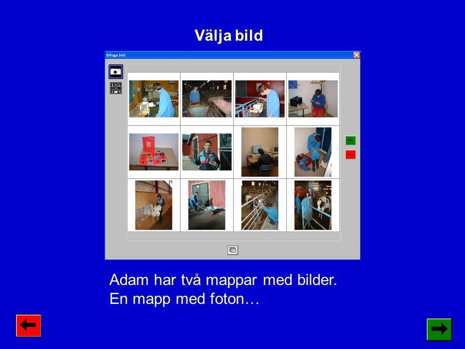 Adam har två mappar med bilder. En mapp med foton… Välja bild