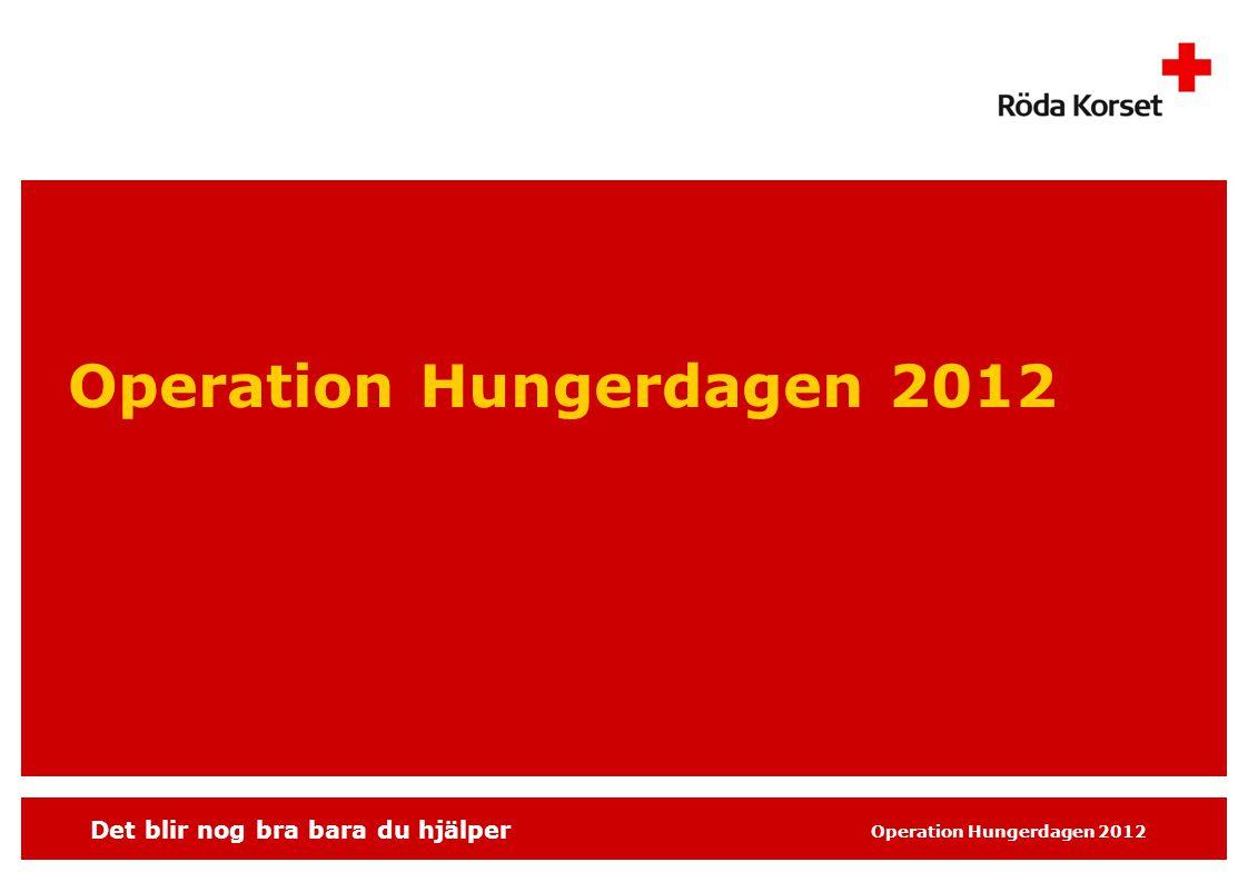 Det blir nog bra bara du hjälper Operation Hungerdagen 2012