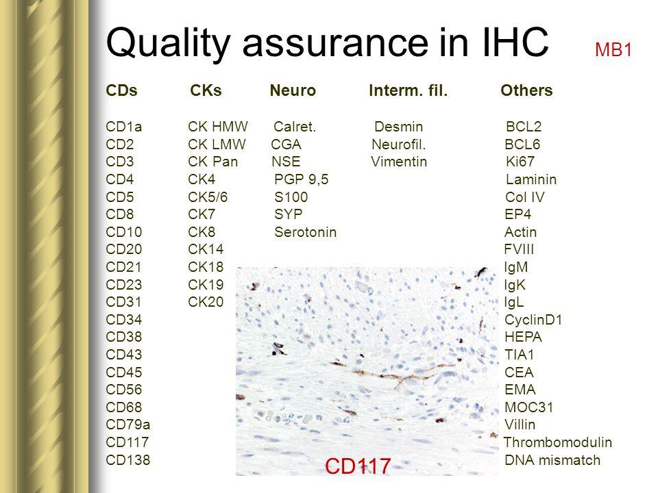 Quality assurance in IHC MB1 CDs CKs NeuroInterm. fil.Others CD1a CK HMW Calret. Desmin BCL2 CD2 CK LMW CGA Neurofil. BCL6 CD3 CK Pan NSE Vimentin Ki6