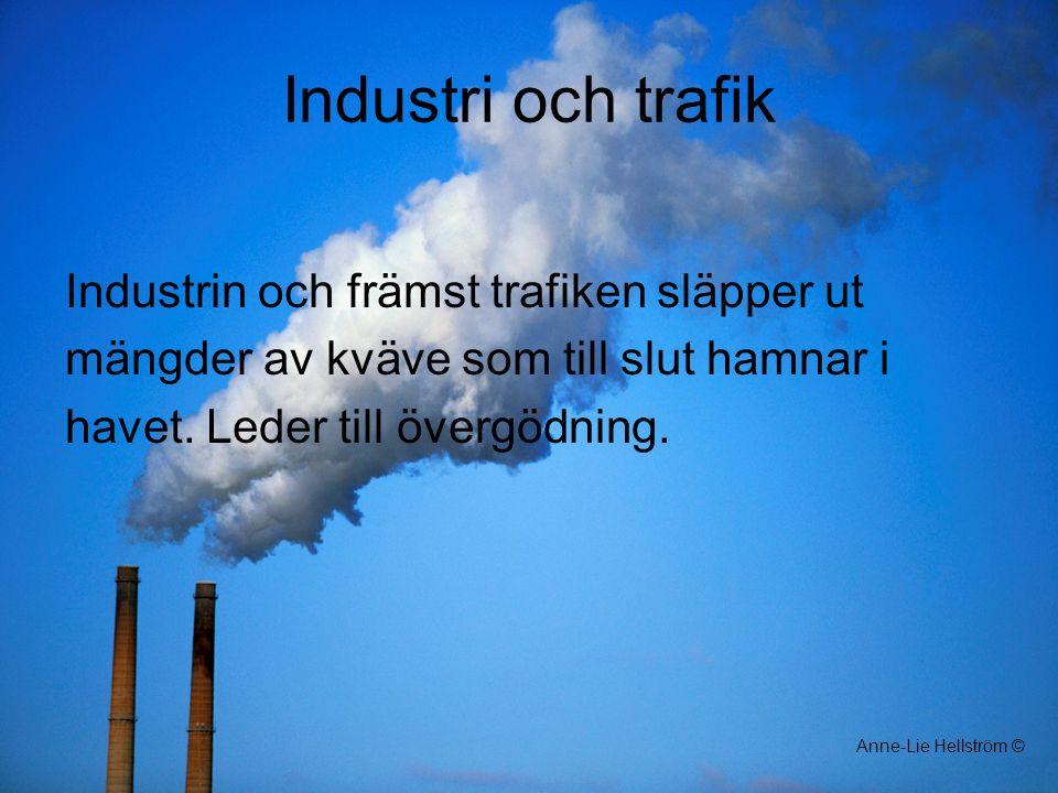 Industri och trafik Industrin och främst trafiken släpper ut mängder av kväve som till slut hamnar i havet. Leder till övergödning. Anne-Lie Hellström