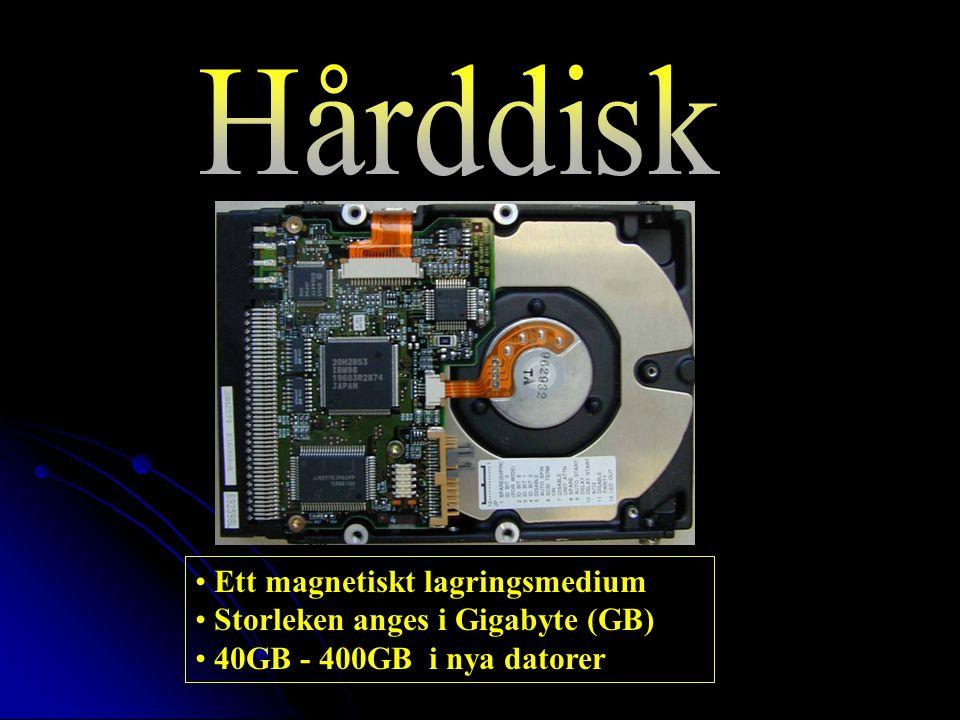 Ett magnetiskt lagringsmedium Storleken anges i Gigabyte (GB) 40GB - 400GB i nya datorer
