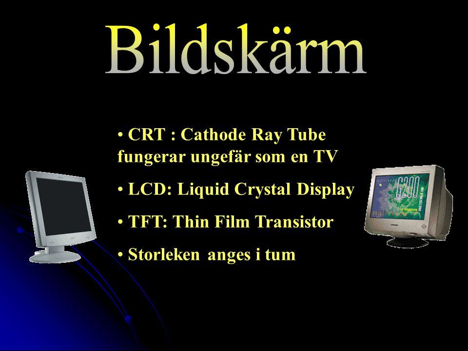 CRT : Cathode Ray Tube fungerar ungefär som en TV LCD: Liquid Crystal Display TFT: Thin Film Transistor Storleken anges i tum