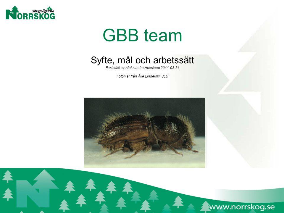 GBB team Syfte, mål och arbetssätt Fastställt av Aleksandra Holmlund 2011-03-31 Foton är från Åke Lindelöw, SLU