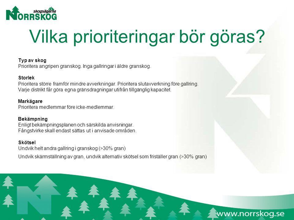 Vilka prioriteringar bör göras. Typ av skog Prioritera angripen granskog.