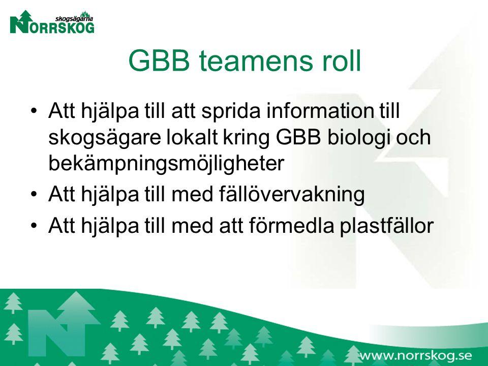 GBB teamens roll Att hjälpa till att sprida information till skogsägare lokalt kring GBB biologi och bekämpningsmöjligheter Att hjälpa till med fällövervakning Att hjälpa till med att förmedla plastfällor