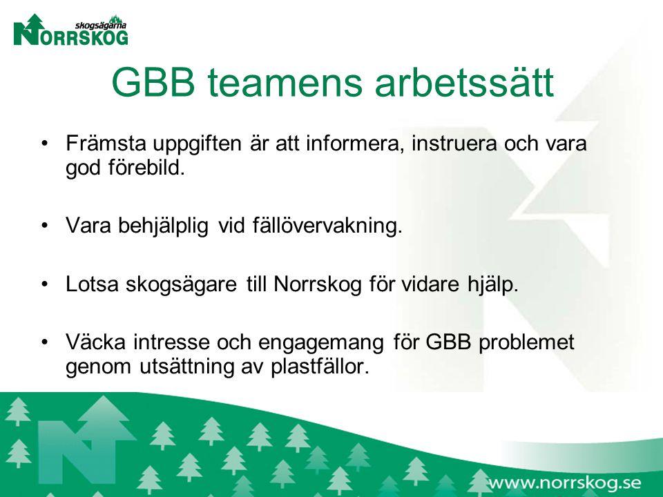 GBB teamens arbetssätt Främsta uppgiften är att informera, instruera och vara god förebild.