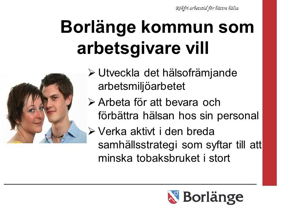 Borlänge kommun som arbetsgivare vill  Utveckla det hälsofrämjande arbetsmiljöarbetet  Arbeta för att bevara och förbättra hälsan hos sin personal 