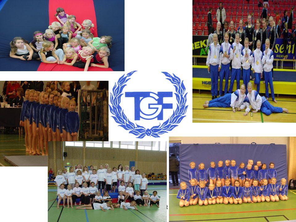 TGF Årsmöte 26 sept 20072
