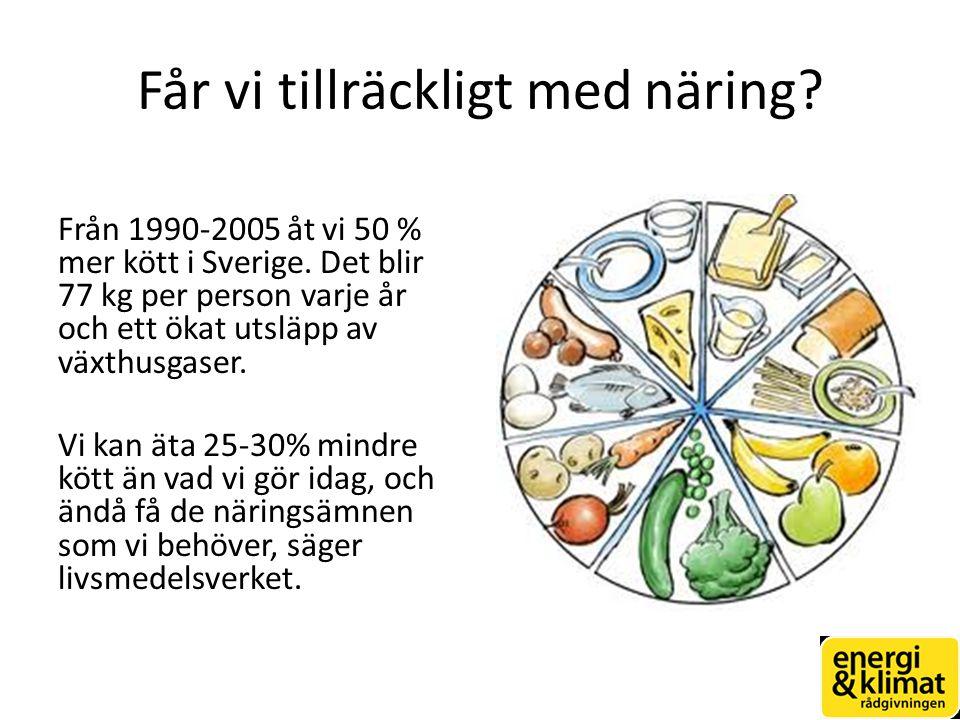 Får vi tillräckligt med näring.Från 1990-2005 åt vi 50 % mer kött i Sverige.