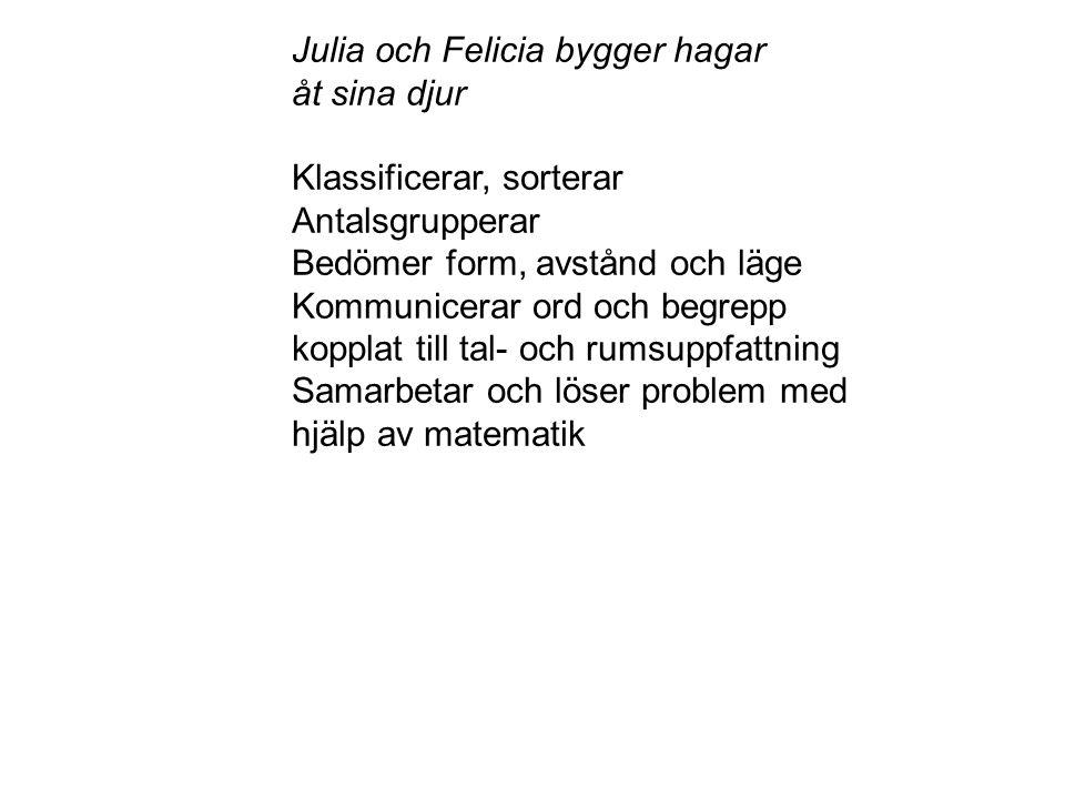Julia och Felicia bygger hagar åt sina djur Klassificerar, sorterar Antalsgrupperar Bedömer form, avstånd och läge Kommunicerar ord och begrepp koppla