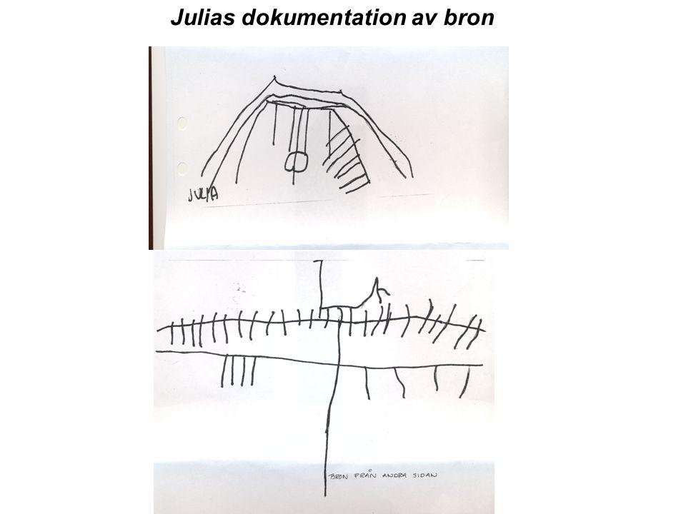 Julias dokumentation av bron