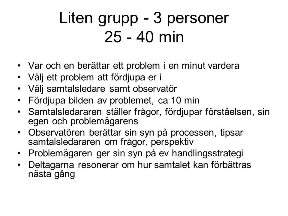 Liten grupp - 3 personer 25 - 40 min Var och en berättar ett problem i en minut vardera Välj ett problem att fördjupa er i Välj samtalsledare samt obs