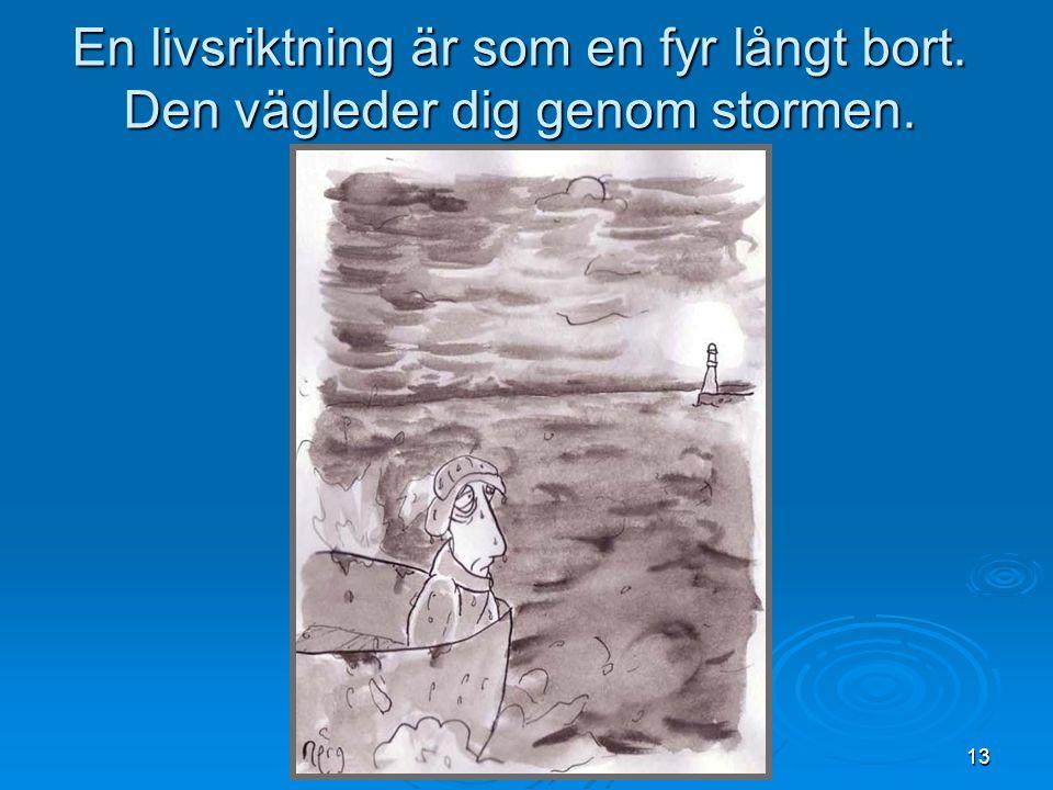 13 En livsriktning är som en fyr långt bort. Den vägleder dig genom stormen.