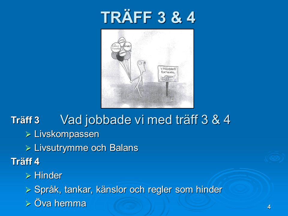 4 TRÄFF 3 & 4 Vad jobbade vi med träff 3 & 4 Träff 3  Livskompassen  Livsutrymme och Balans Träff 4  Hinder  Språk, tankar, känslor och regler som